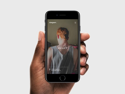 stargasm. Mobile Version personnal bold clean photographer photography photo template theme minimal