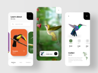 Bird Search & AR Scan