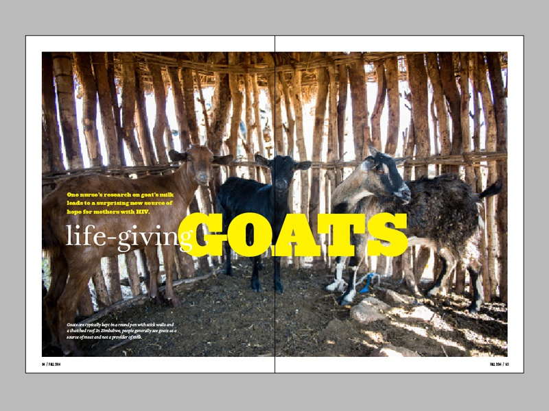 Horizons Layout - Life-Giving Goats horizons magazine article layout team missions