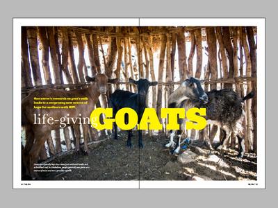 Horizons Layout - Life-Giving Goats