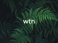 Weather The Fern