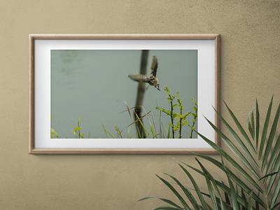 Photo Editing photo frame photo retouching photo editing editing mockups illustration graphic design design