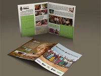 Brochure africa