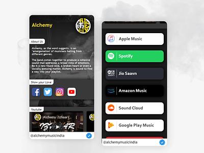 Social Media Kit for Music Band website illustration ui design