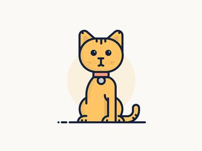 Meet Rocky 2d purr design character line flat illustration pet cute leg cat rocky