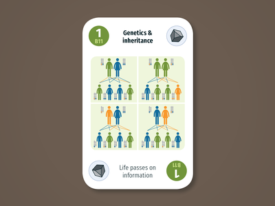 Diversity Deck – Biosphere: Genetics and inheritance children parents genetics genes dna biosphere maintenant science system earth sustainability product play game design card infographic illustration