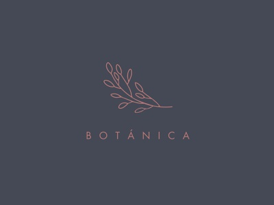 Botánica thin font thin line line logo botanical logotipe icon typography logo vector minimal branding flat