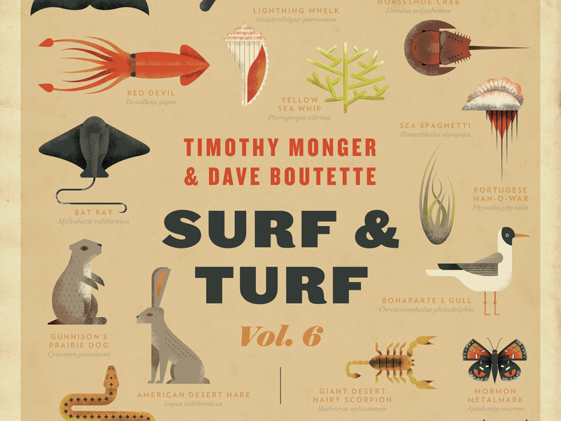 Surf & Turf Poster! field guide encyclopedia squid animals sea poster