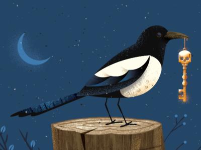 Sneaky Bird moon bird key magpie