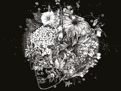 Flower Head drawing painting illustration flower