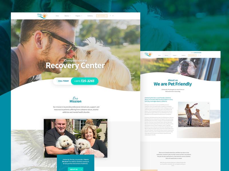 Alcohol & Drug Rehab Facility - Website Design design landing page design website pet addiction rehab recovery