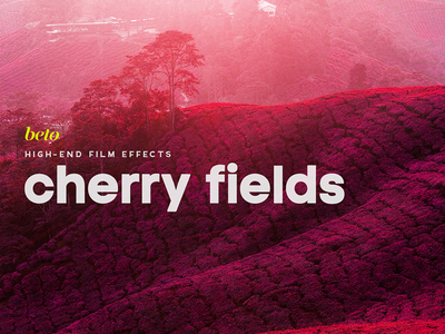 Cherry Fields Action warm fall autumn wine dawn red cherry bloody blood elements photoshop infrared