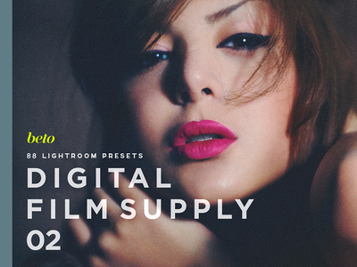 Digital Film Supply 02 photographer raw end high retouch bundle professional styles van visual film vsco