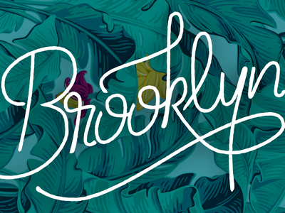 Brooklyn typetuesday custom type hand drawn handtype typography lettering vintage rough monoline brooklyn type