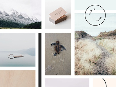 Mood Board: Dennelly Design authentic simple exploration growth serene mood board