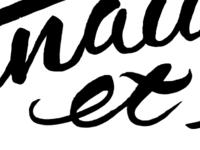 Brush Lettering Scan