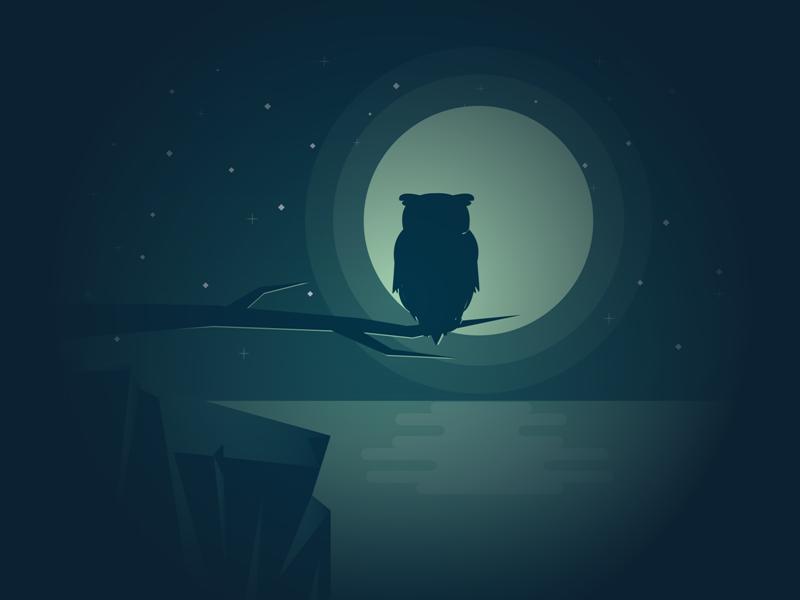 Owl night branch illustrator illustration reflection sea water tree moon owl
