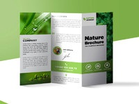 Freebie Nature Tri Fold Brochure Template Free PSD By PSD - Tri fold brochures templates