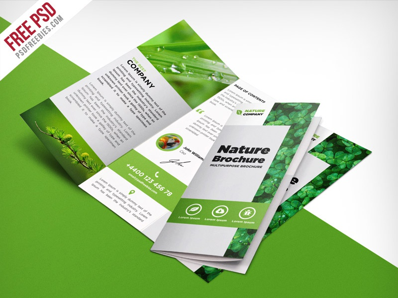 Freebie Nature Tri Fold Brochure Template Free PSD By PSD Freebies - Tri fold brochure photoshop template