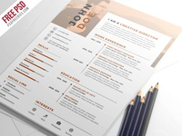 Free PSD : Nice And Clean Resume CV PSD Template