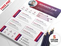 Designer Resume Templates Free PSD