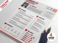 Professional Resume CV PSD Templates