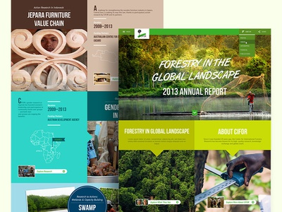 Digital Annual Report (Final Version) percentage non-profit landscape map home digital report research forest infographic web annual report