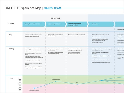 True ESP Experience Map: Sales Team persona stages journey chart map feeling analysis ux research flow experience map