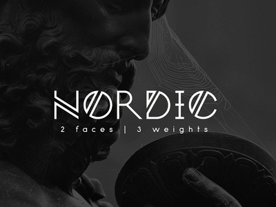 Nordic typ fonts font nordic typography typeface