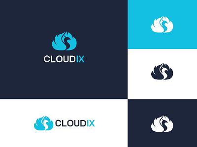 Cloud + Phoenix logo logo  branding logo designs phoenix bird logo phoenix bird phoenix phoenix logo cloud logo logo logo design branding professional logo graphic design