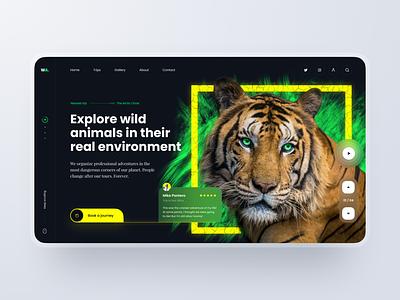 Landing Page: Dangerous Tours journey travel tours wild tiger animals nature concept website landingpage page landing