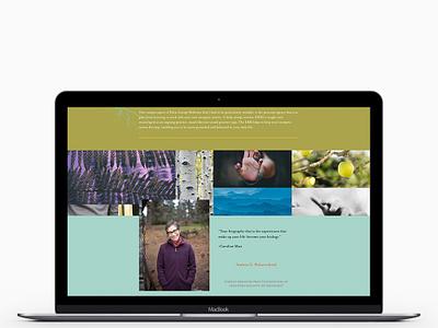 Thyme & Energy Website Design + Develpment web wordpress development wordpress design elementor wordpress blog website
