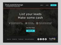 TheLeadsExchange website concept #3