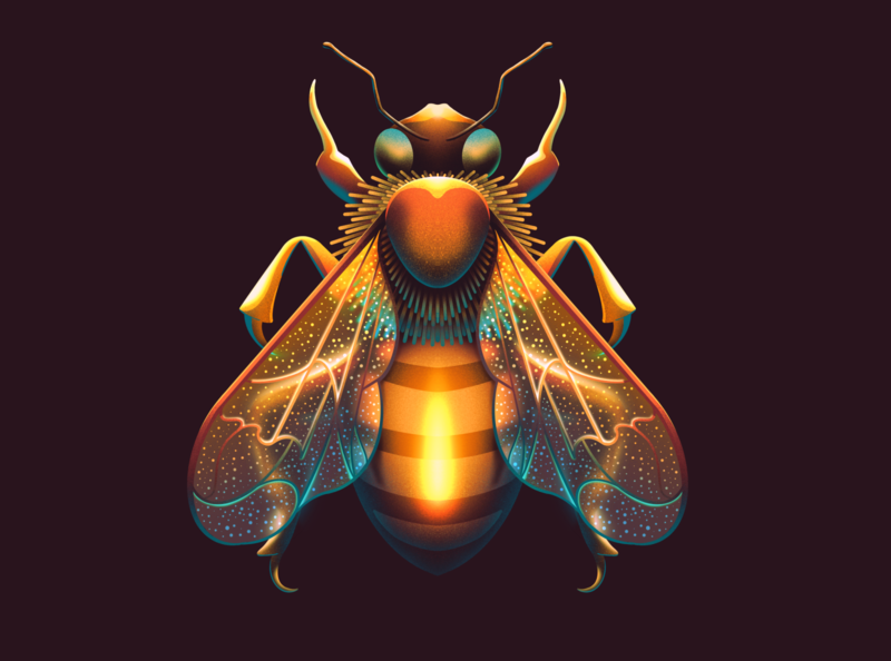 Honey Bee wing sting illustration procreate thorax wings insects insect honey bee