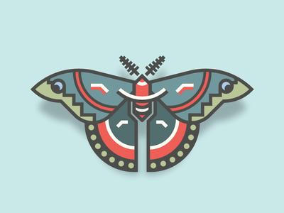 Cecropia Moth (26/365) butterfly design series daily design bug insect cecropia moth cecropia wings moth