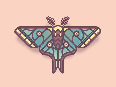 Spanish Moon Moth (30/365) moon moth butterfly design series daily design bug insect spanish moon moth spanish wings moth