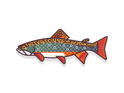 Brook Trout (46/365) fishy design series daily design river lake water gradients colorful trout brook trout fishes fish