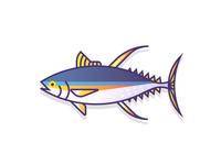 Yellowfin Tuna (52/365)