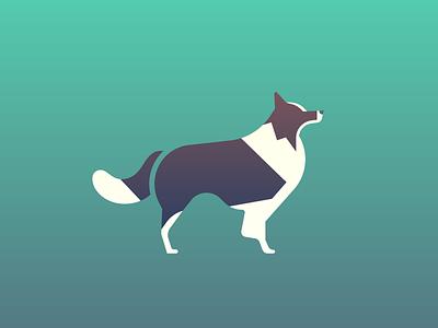 Border Collie (94/365) daily design design series stylized illustration pet doggo pupper puppy collie border collie dogs dog