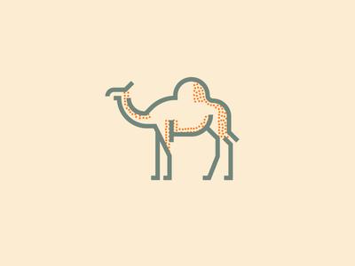 Camel (241/365)