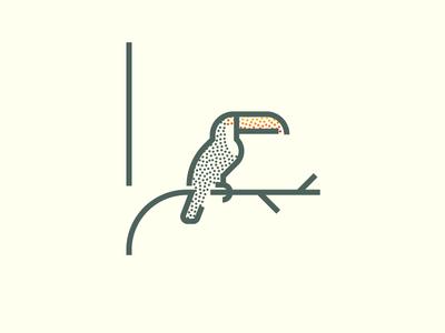 Toucan (242/365)