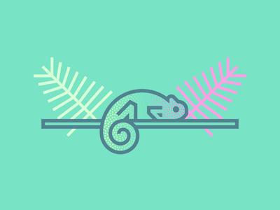 Chameleon (244/365)