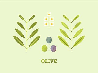 Olive flower illustration plant illustration illustration texture flower seed leaves leaf plant tree olives olive