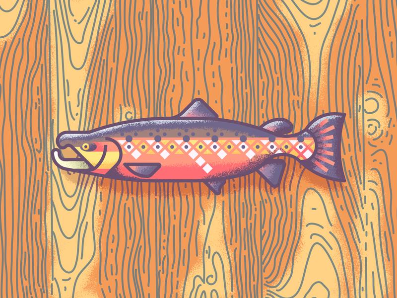 Atlantic Salmon Revisit: Texture illustration grain wood retro supply texture fish salmon