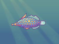 Orange Spotted Filefish Revisit: Texture
