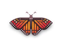 Monarch Revisit: Texture