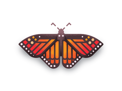 Monarch Revisit: Texture retro supply texture illustration butterfly monarch