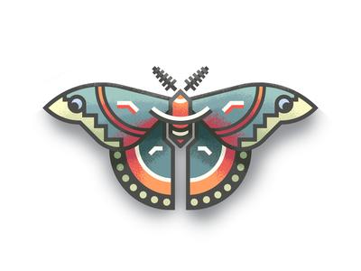 Cecropia Moth Revisit: Texture