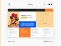 12 Dental, Section Design kit