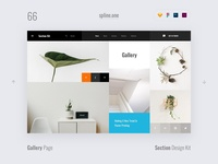 66 Gallery, Section Design Kit